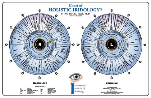 holisticIridology-Chart